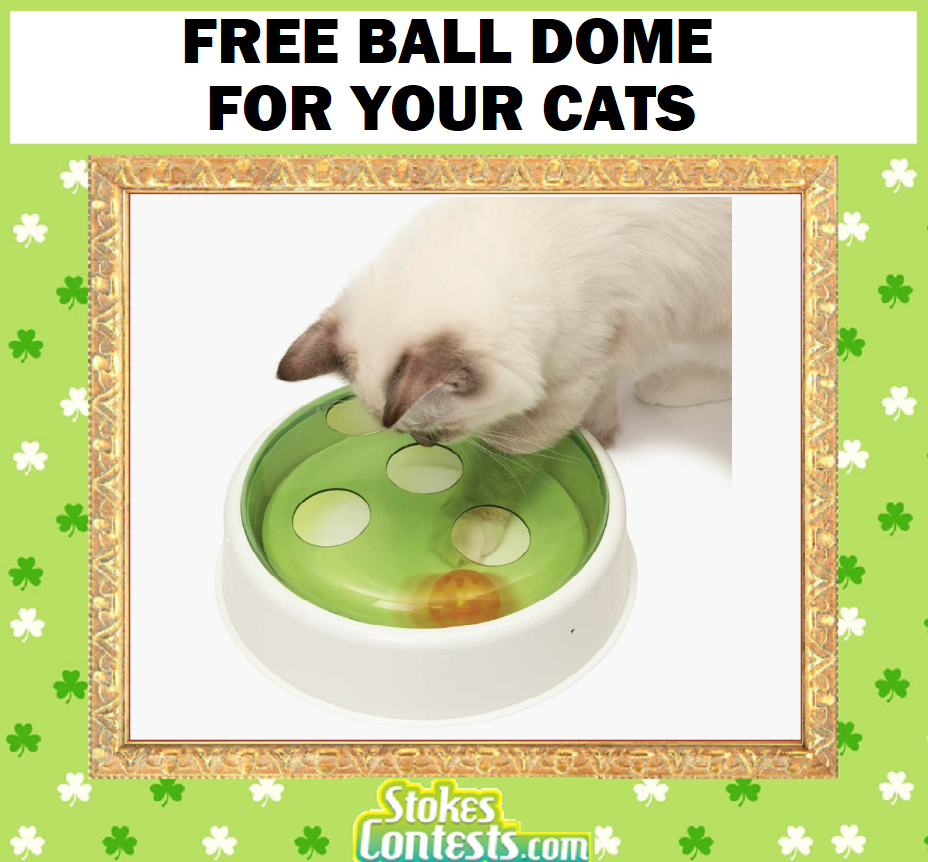 FREE Ball Dome for Your Cats