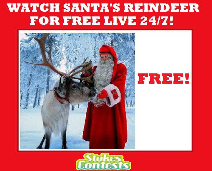 Watch Santa's Reindeer for FREE LIVE 24/7!